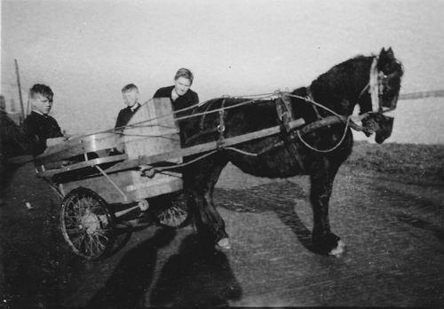 Wieringen Jan v 1933 1945 op Ponywagen met broer Cor en Siem v Oord