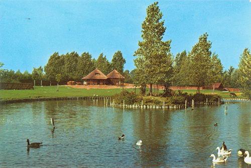 Zuiderdreef 1987 Kinderboerderij
