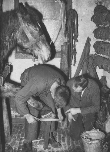 Zuijdam D W 1941-42 Cursus Hoefbeslag 03