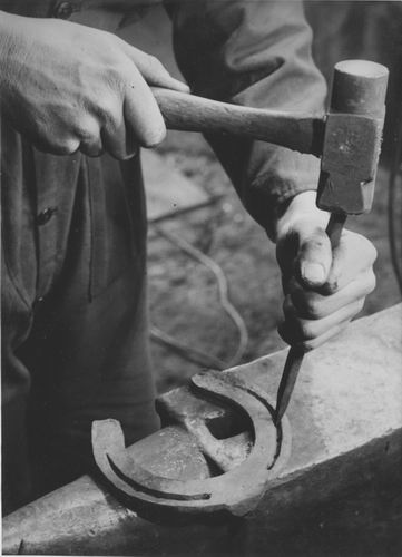 Zuijdam D W 1941-42 Cursus Hoefbeslag 05