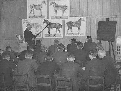 Zuijdam D W 1941-42 Cursus Paardenkennis 01