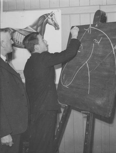 Zuijdam D W 1941-42 Cursus Paardenkennis 04
