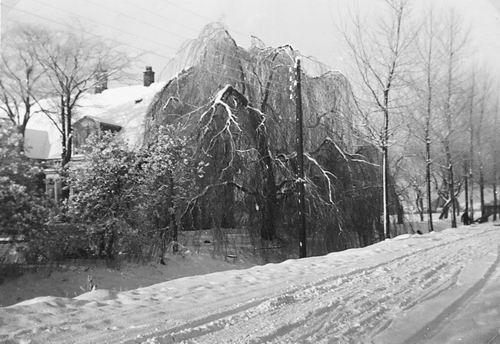 Aalsmeerderweg O 0318 1945 Boerderij Schoemakers vanaf Vijfhuizerweg
