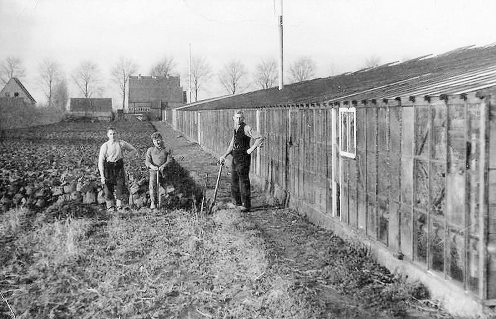 Aalsmeerderweg O 0800 1940- Kassen Jan Joore