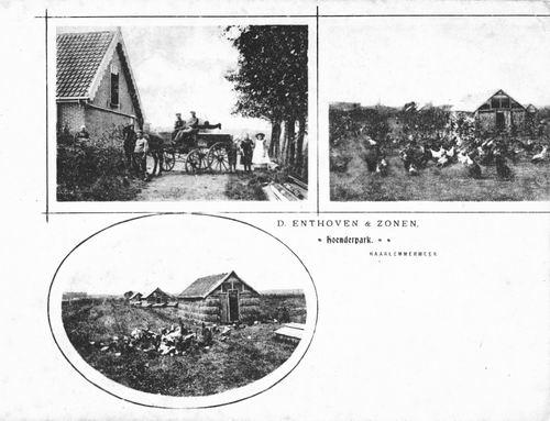 Bennebroekerweg Z 0880 1905 Dirk Enthoven Hoenderpark