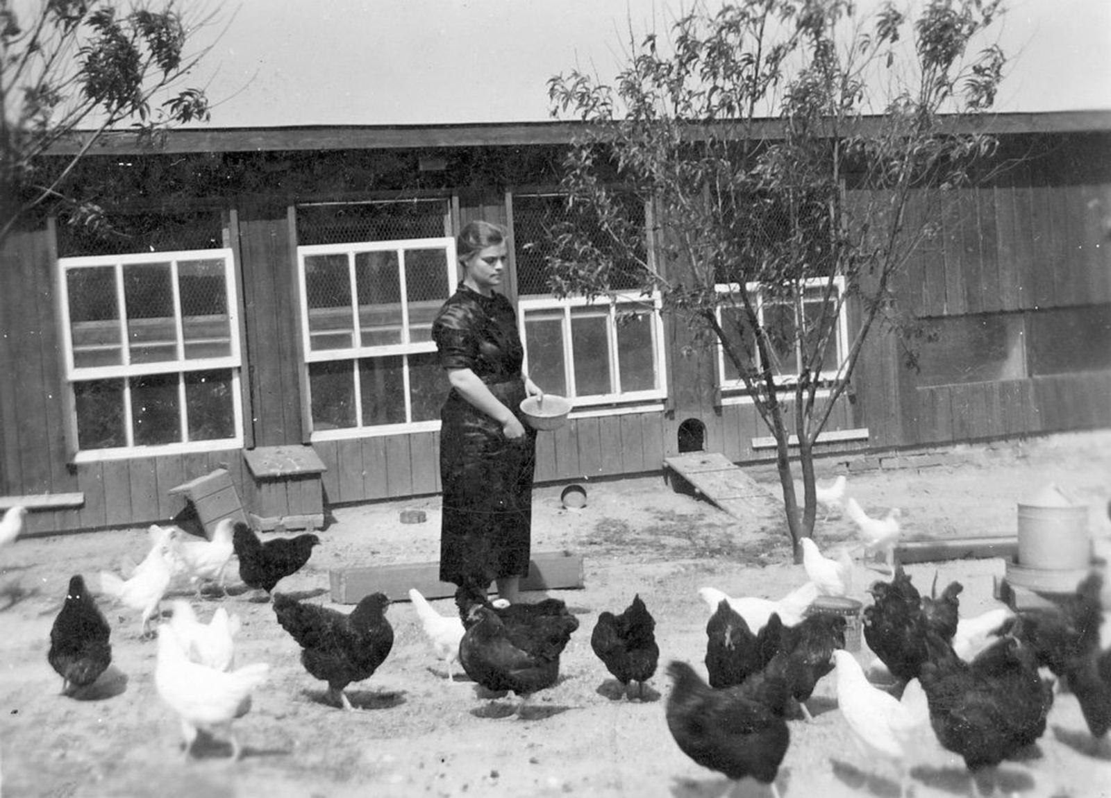 Bliek Arie 1911 19__ vrouw Trees in Duitsland met de Kippen