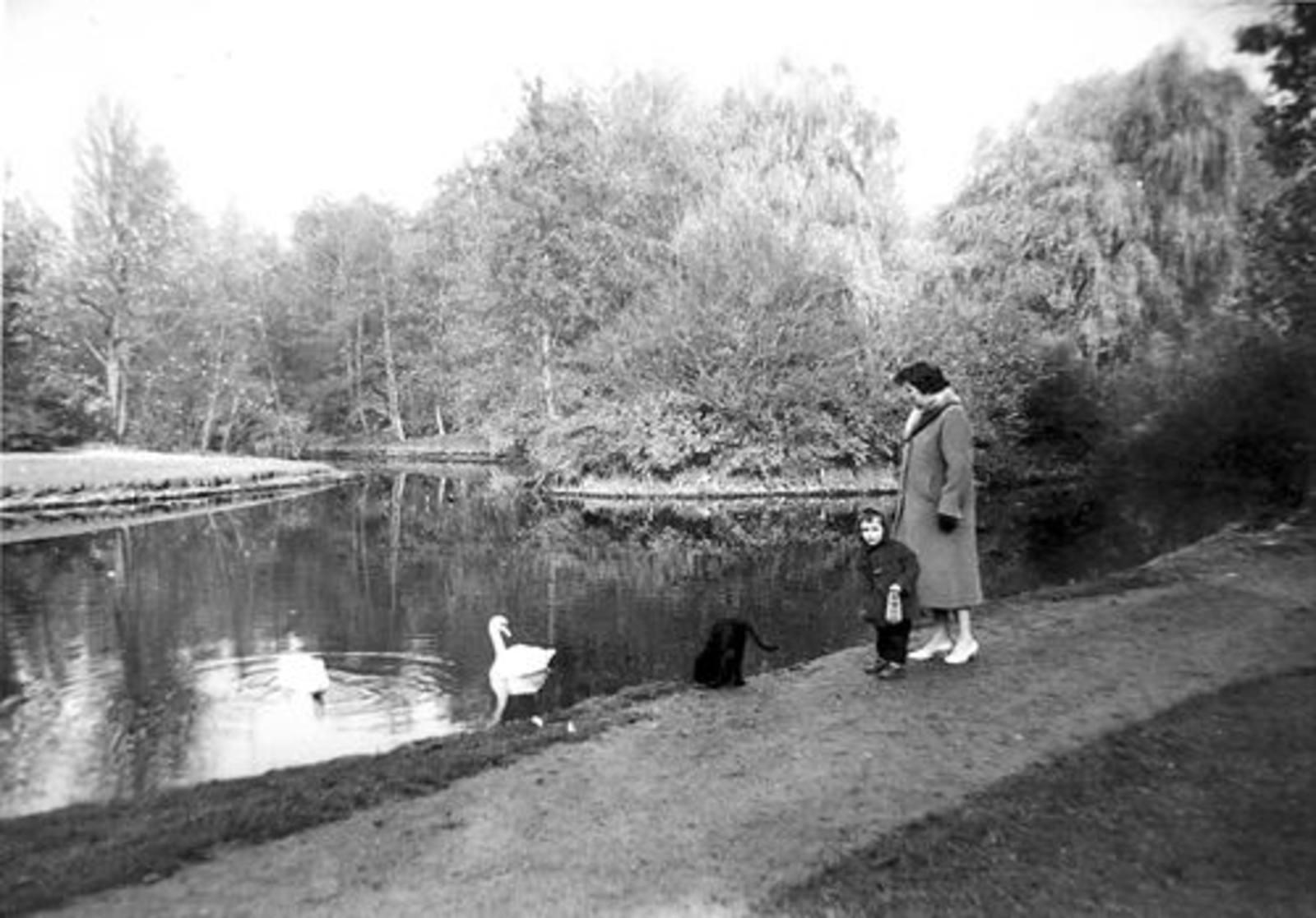 Boslaan 0000 Wandelpark 1958± met fam de Koning 02