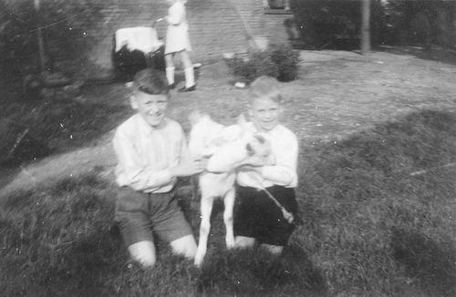 Calvelage Henk 1935 19__ met Geit en broertje Ben