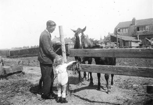 Calvelage Jan 1924 19__ met neefje Maarten Tulen bij Paarden