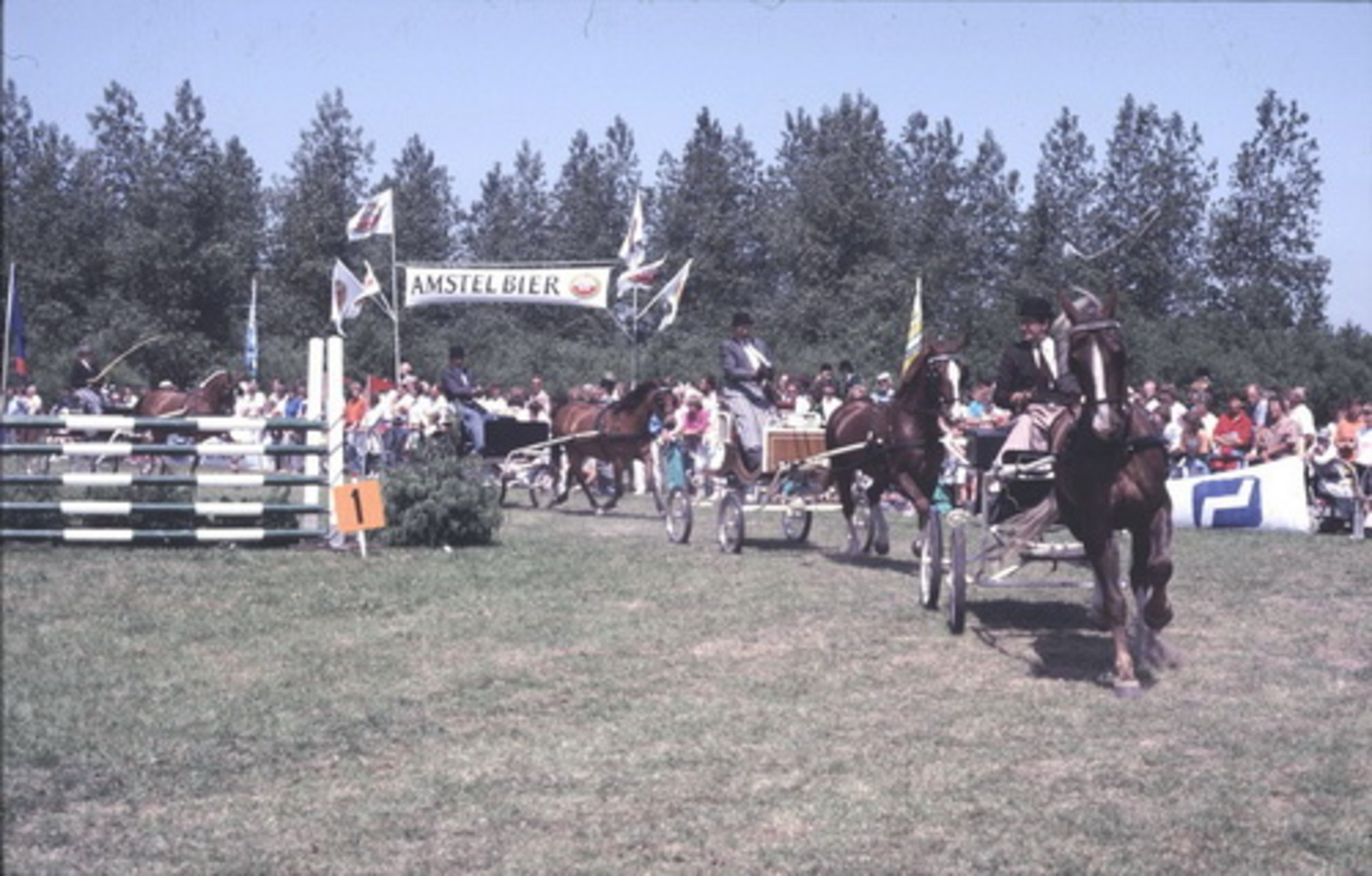 Concours Hippique 197_  Paard en Wagens 01