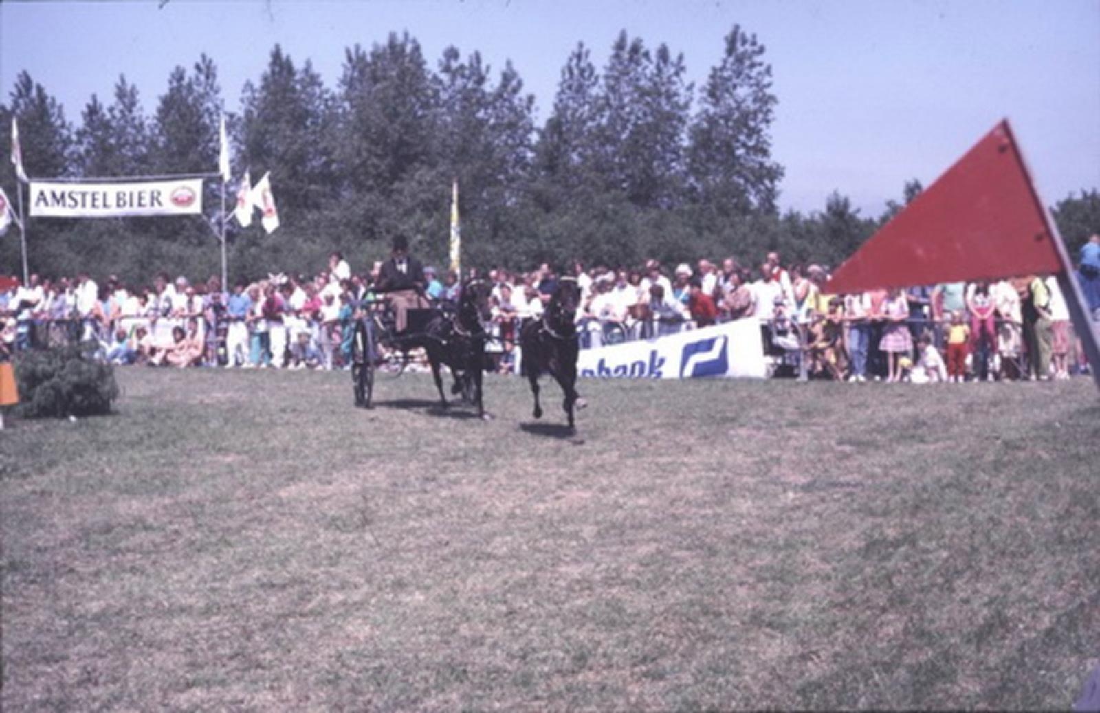 Concours Hippique 197_  Paard en Wagens 03