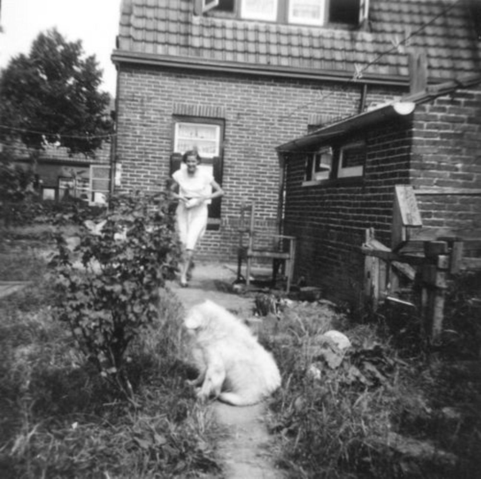 Fortweg W 0049 1955 Achteraanzicht met Grad Koeckhoven
