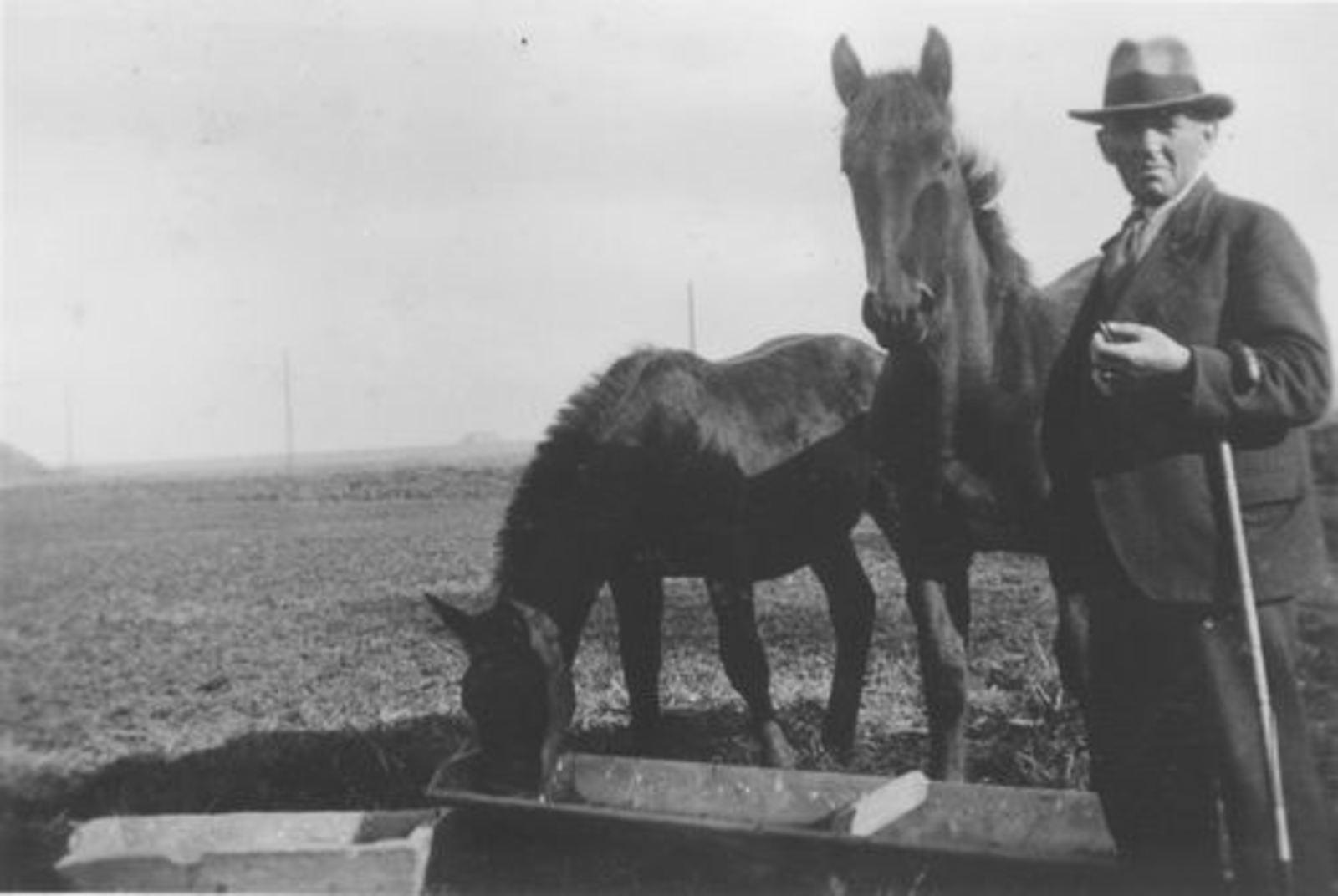 Geertzema_Onbekend_778_1940_Man_bij_Paarden