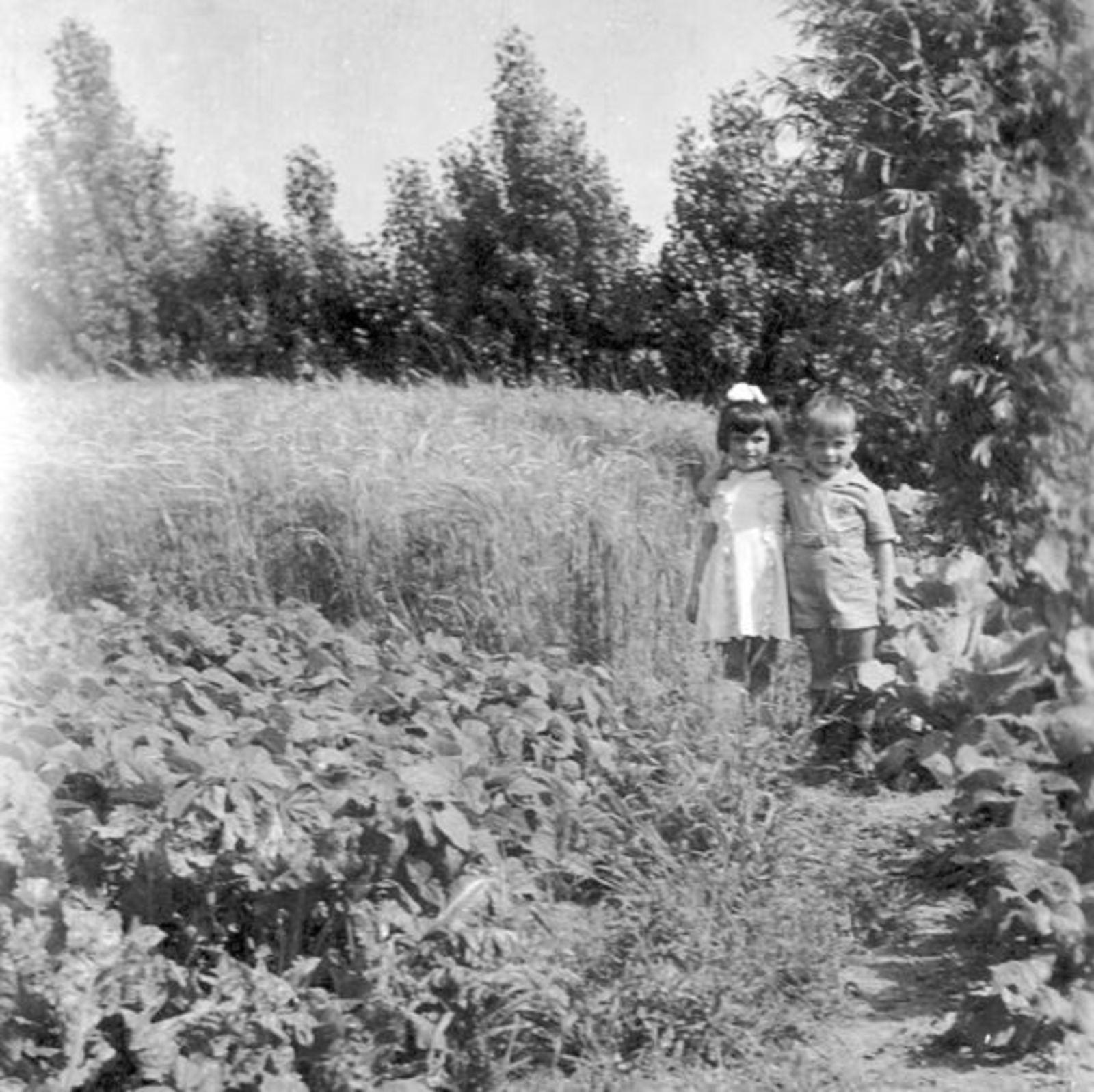 Groef Abraham vd 1882 19__ met Familie in Tuin 04