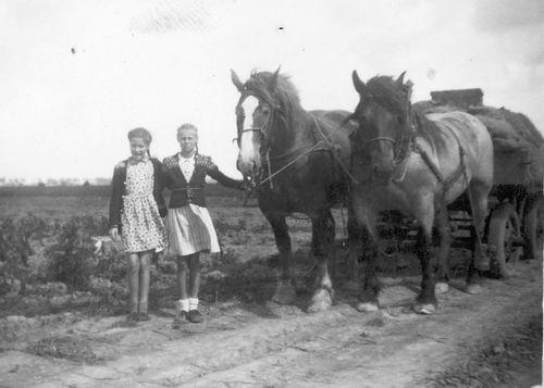 <b>ZOEKPLAATJE:</b>Helm Femmie vd 1948 Onbekend bij Claij 03