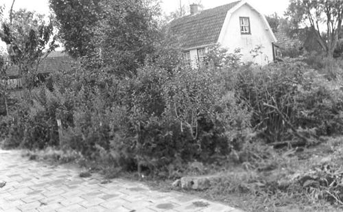 Hoofdweg W 1587 1966 Huize Wed de Jong