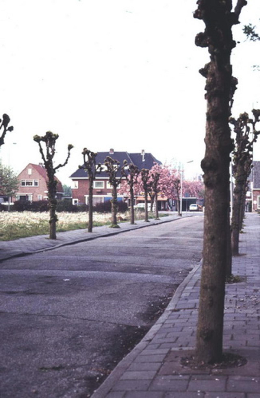 Julianalaan W 002_ 197_ Zicht naar Kruisweg