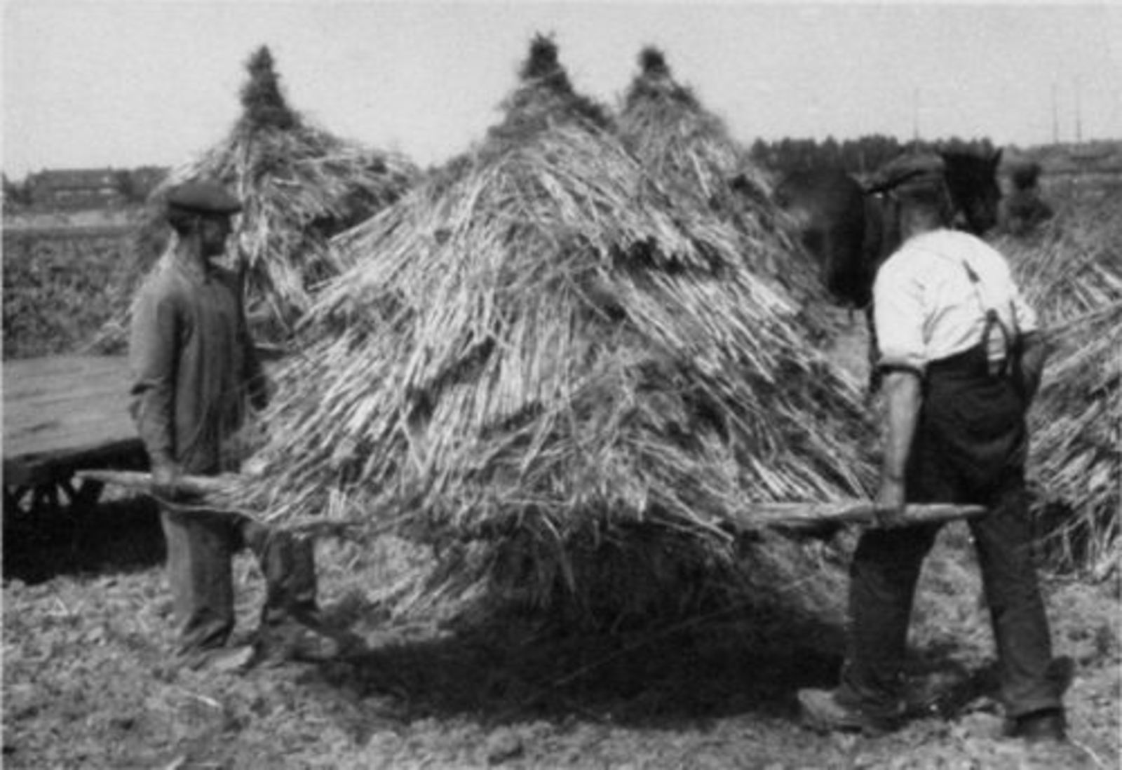 Karweioogst 1946± bij v Egmond 01 Tollen tillen
