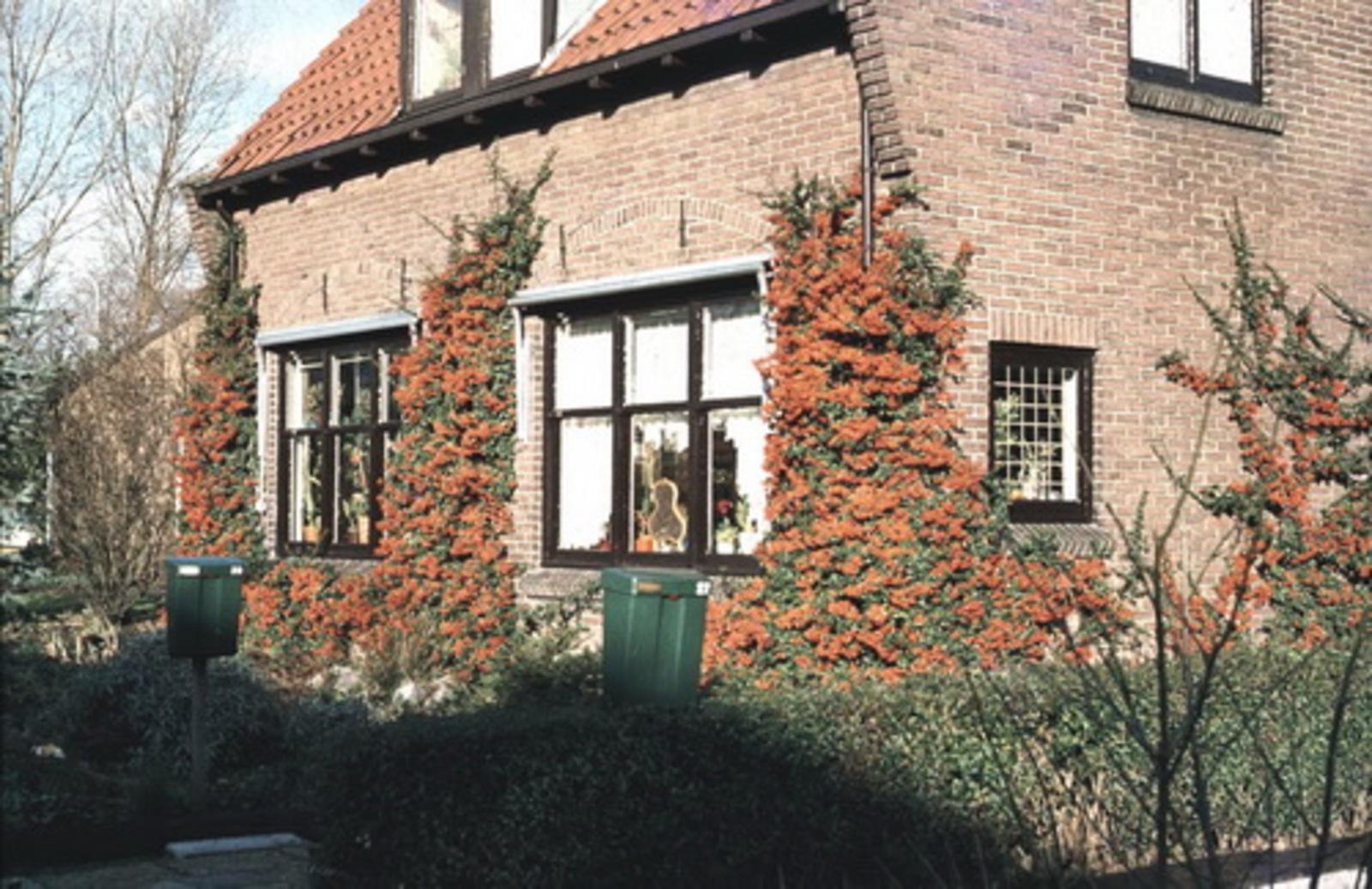 Kruislaan N 0029-31 197_ Huize v Leeuwen