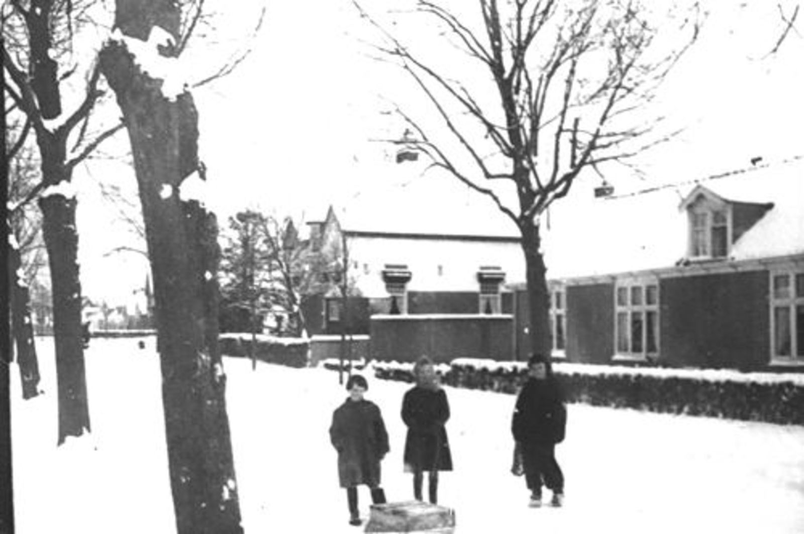 Kruislaan Z 0004-08 1956± Huizen