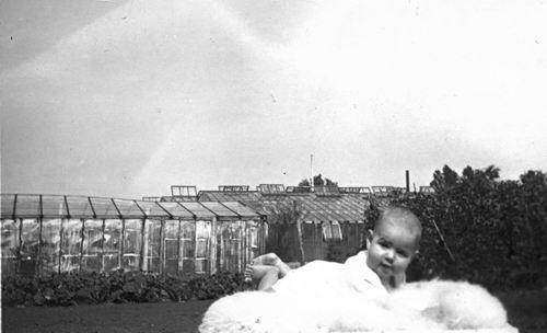 Kruisweg N 0315 1943 met Baby Cees Stieva en familie 02