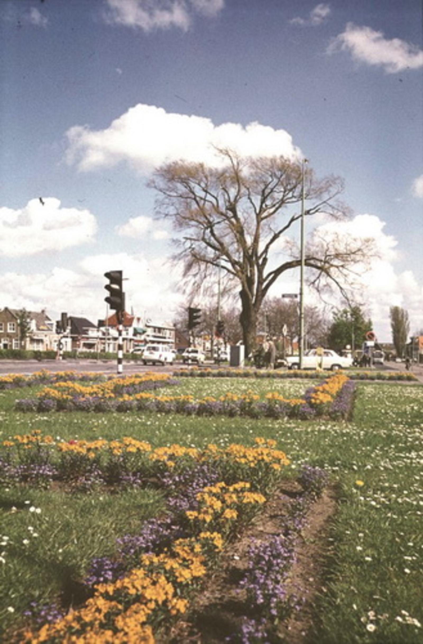 Kruisweg N 1006± 197_ Bloemenperkies bij Kruising 02