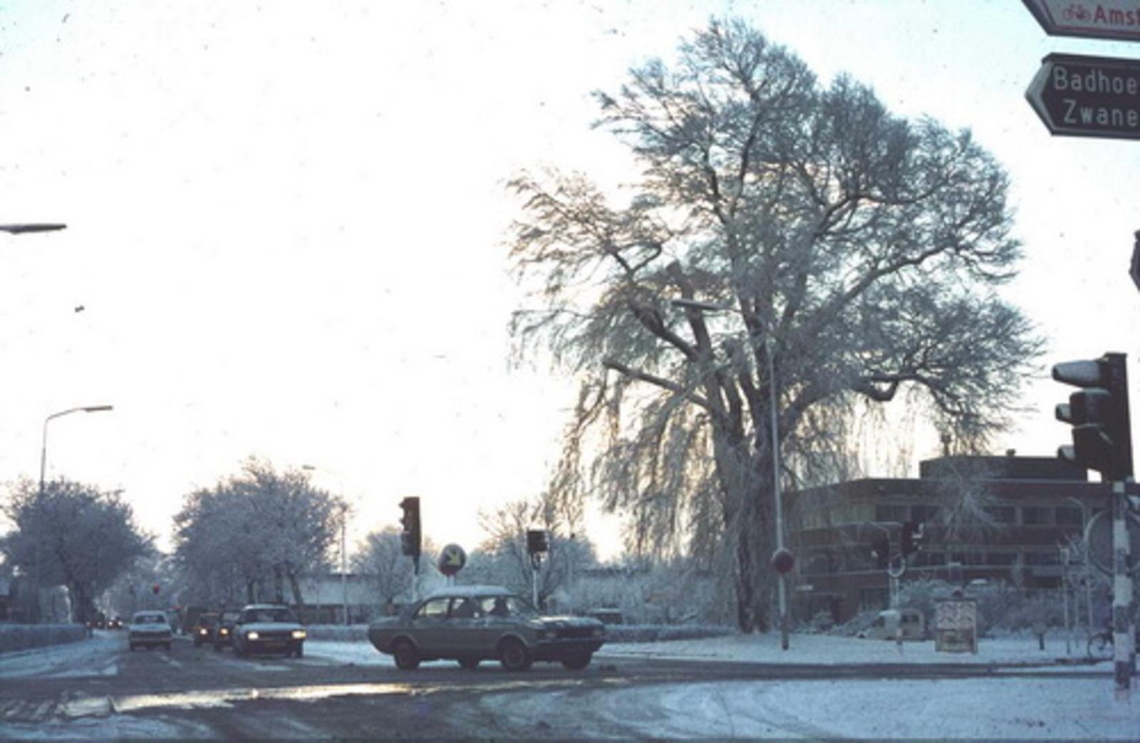 Kruisweg N 1006± 197_ Kruising in de Sneeuw