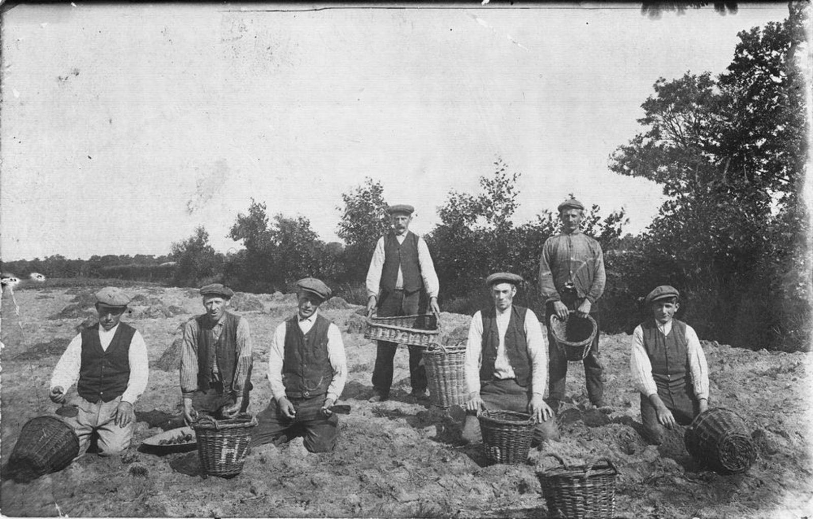Meeldijk Arie 1873 1914 Landarbeider stuurt kaart aan Broer Hendrik Teunis