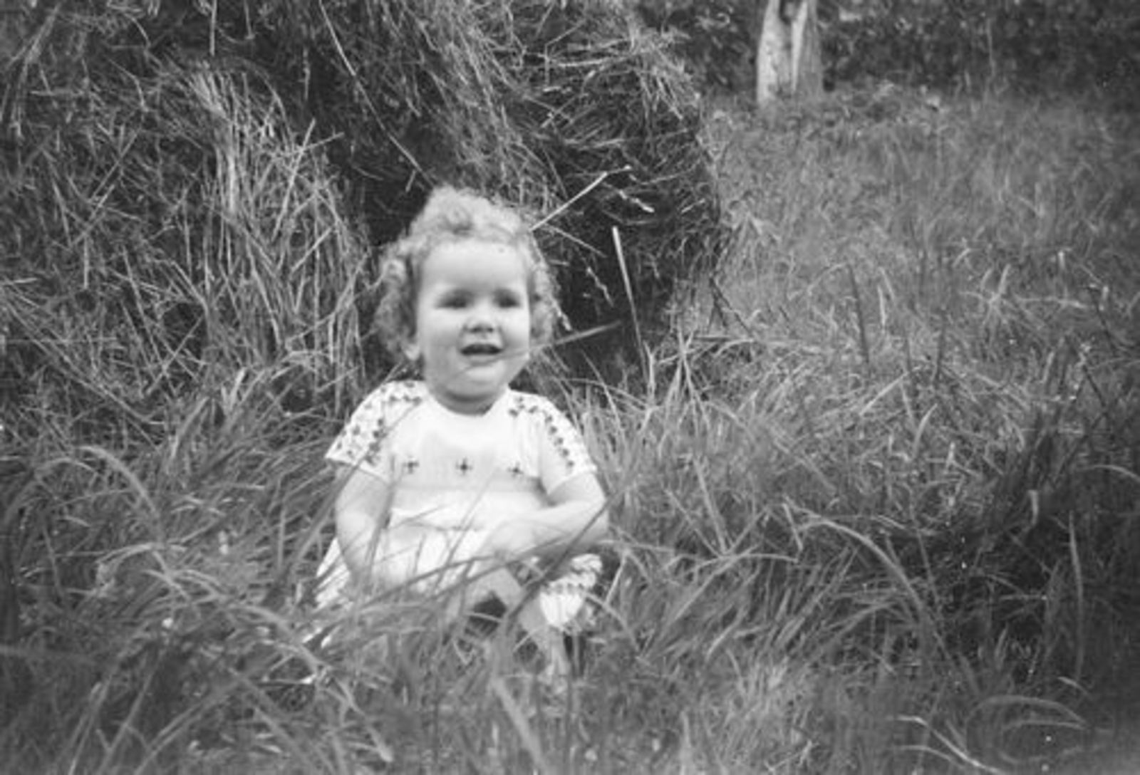 Pijpers Veronica 1955 1956± in het Gras