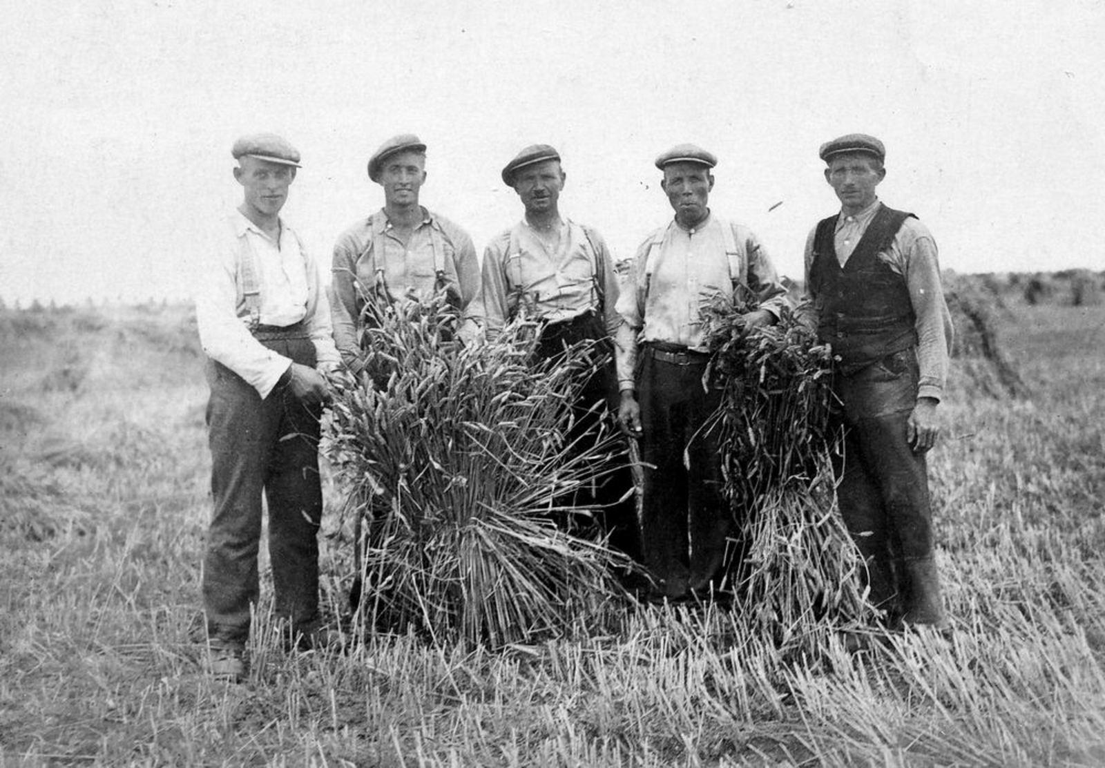 Smit Leendert 1898 1952 Korenoogst bij Groenenberg aan IJweg