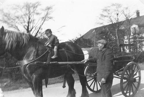Stieva Cornelis Leendert 1942 1945 op Hengstenkar Opa Cees 01