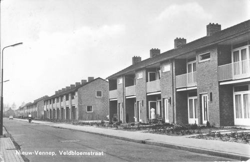 Veldbloemstraat 1967