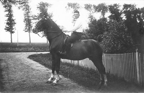 Vlieger Dirk de 1906 19__ te Paard