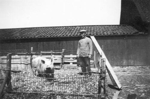Vlieger Siem de 1909 19__ met Varken