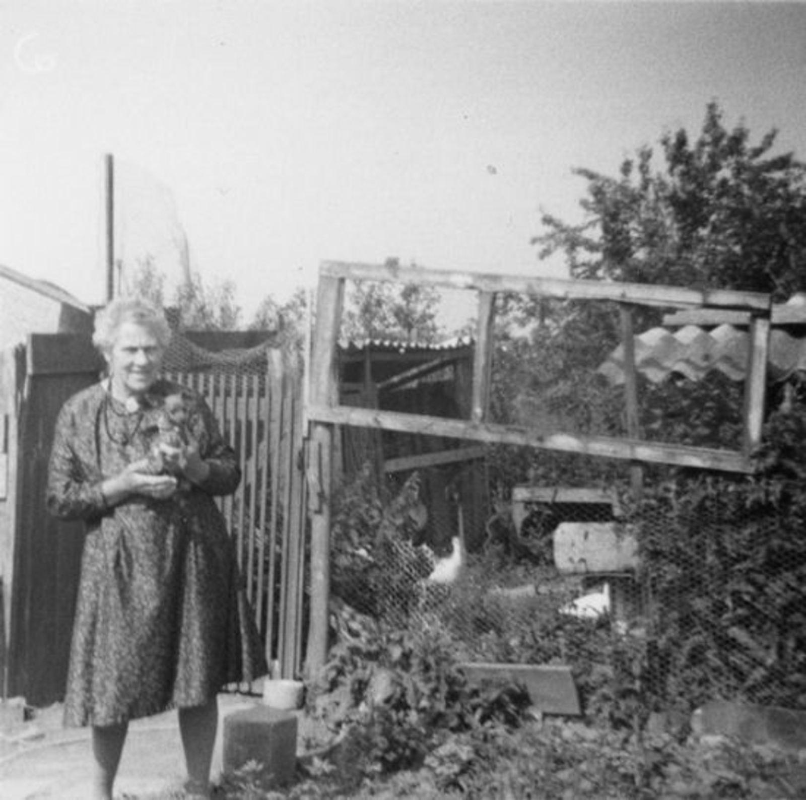 Vuren-Malipaard Pietertje v 1900 19__ Onbekend 31 met (schoon)zoon Co