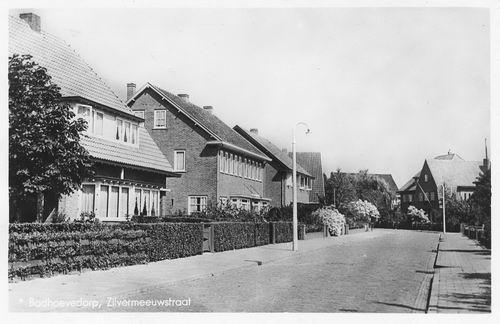 Zilvermeeuwstraat 1948