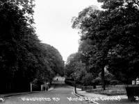 Woodhayes  Road, Wimbledon