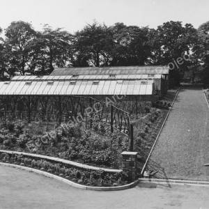 Driveway after Alterations with Greenhouses (c)