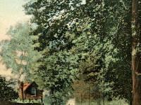 Morden Road, Hatfield's Corner