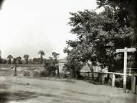 Durnsford Road, Wimbledon Park