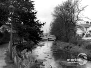 Wandle, off Beddington Lane