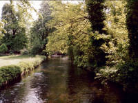 Morden Hall Park, Morden: River Wandle