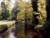 Morden Hall Park, Morden: River Wandle