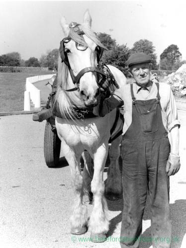 Bill Harris with horse Katie