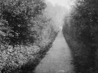 Tramway Path, Mitcham Park Estate: Leading West