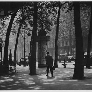 646 - Tree-lined street with three men walking on the pavement