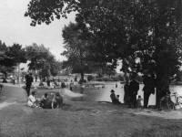 Seven Islands Pond, Mitcham Common