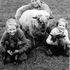 Children with lambs
