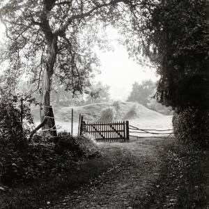 Breinton Camp