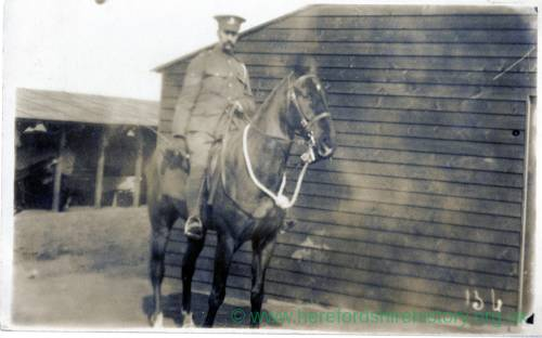 Solider on horse, undated postcard